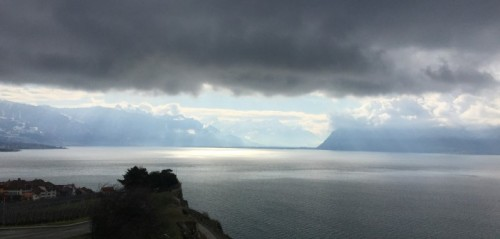 Lavaux-in-the-rain-702x336