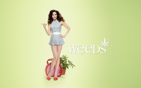 mary-louise-parker-weeds-tv-series-background-163090